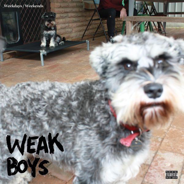 weakboys