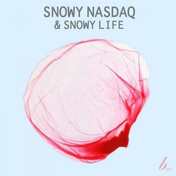 snowy_nasdaq